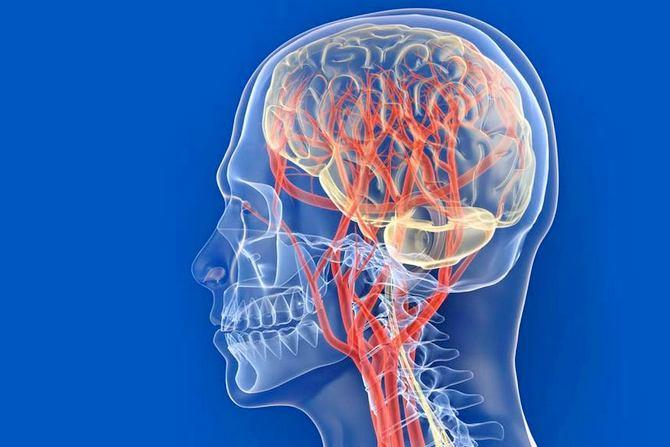 Очаговая лейкоэнцефалопатия сосудистого генеза что это такое